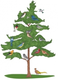 Consider a seasonal gift to the Plymouth Memory Tree to help fellow townies.
