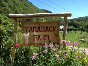 Tamarack Farm at Farm and Wilderness Camp