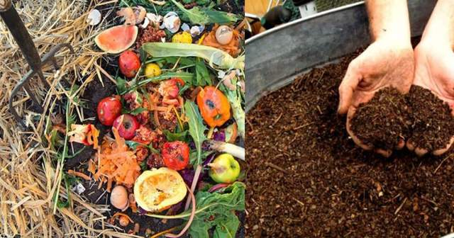 Composting-Made-Easy-6-Simple-Steps-to-Follow3.jpg